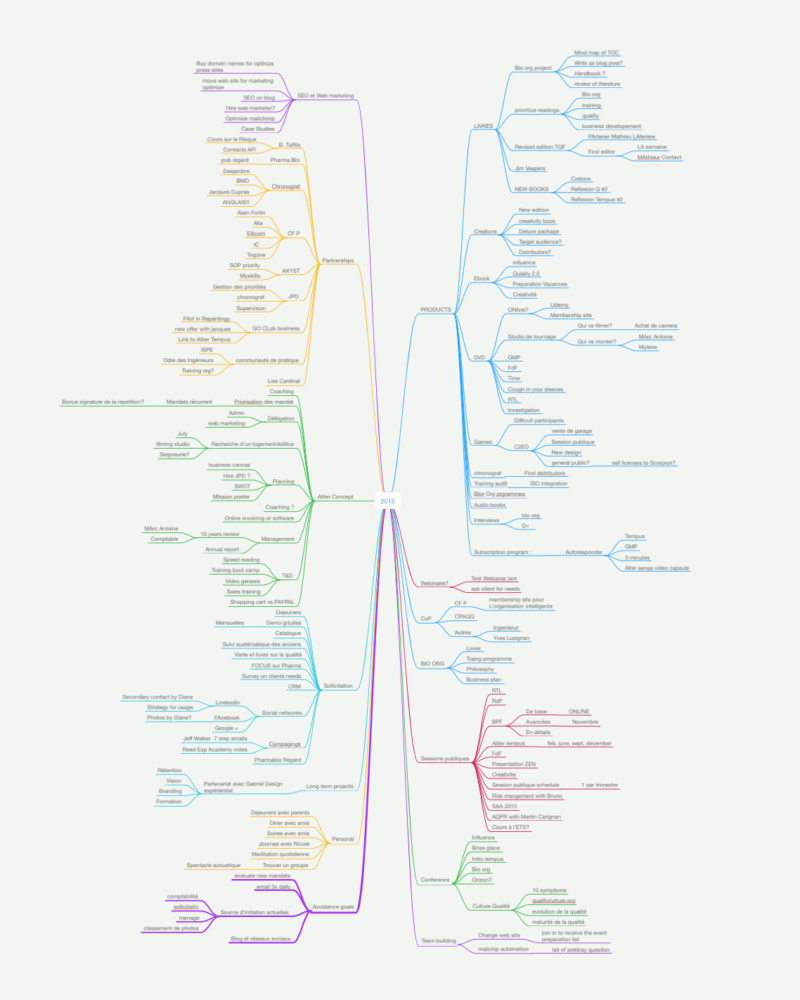 remord de janvier mind map