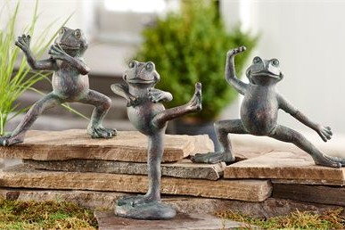 La grenouille et le taichi
