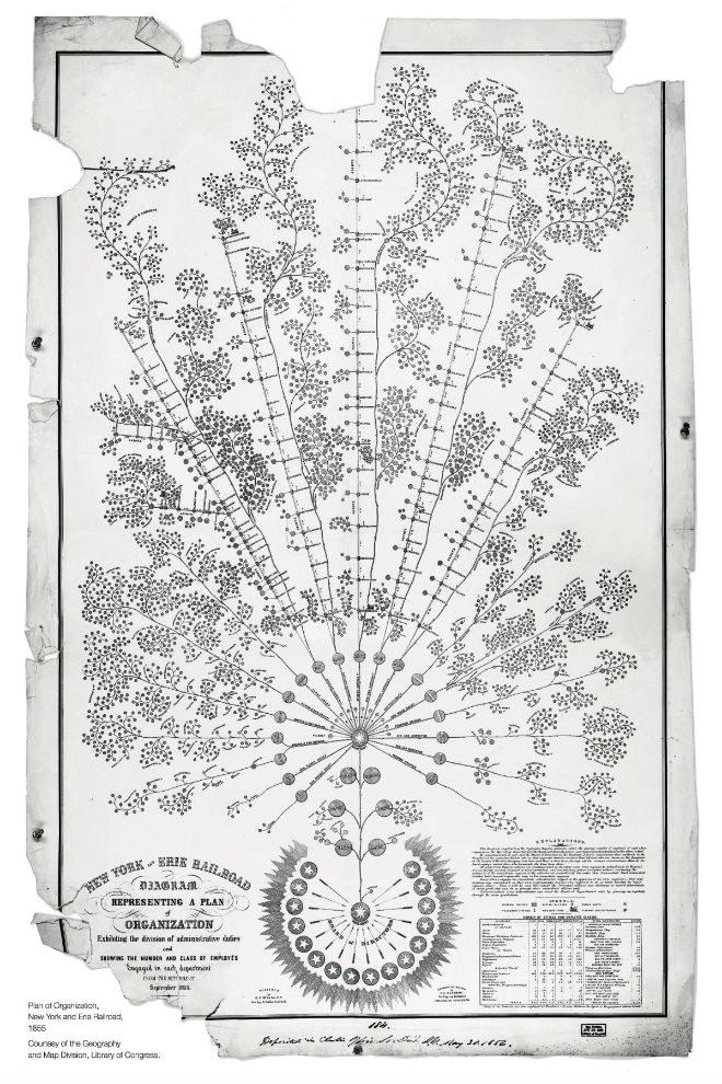 McCullum Org chart