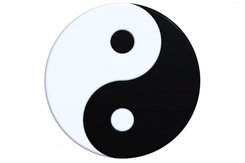 Dual nature of the intelligent organization